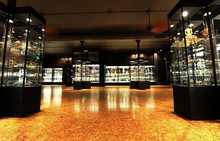 Best Colorado Smoke Shop-Illuzion Glass